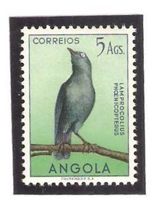 Angola 1951, 5 Ags. Lamprocolius phoenicopterus. Red-shouldered glossy starling.