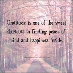 Find peace and happiness through gratitude.