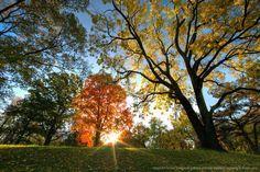 Northeast Kansas Autumn 2012