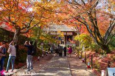 Le temple Jôjakko-ji situé au pied de la montage Ogura dans le quartier Arashiyama. #Kyoto #temple #Jojakkoji