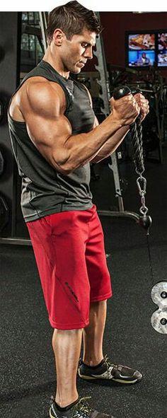 Corpo Musculo.