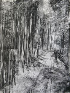 Charcoal Drawing Technique I love this! Janine Baldwin: 'Cropton Forest II', charcoal, graphite and pastel on paper, - An interview with Janine Baldwin, an artist from North Yorkshire who is fascinated by painting landscape in oils. Landscape Drawings, Landscape Art, Landscape Paintings, Amazing Drawings, Easy Drawings, Charcoal Sketch, Charcoal Drawings, Abstract Charcoal Art, Forest Drawing