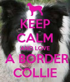 KEEP CALM AND LOVE  A BORDER COLLIE
