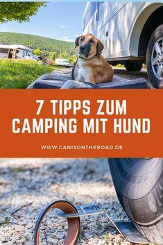 Die wichtigsten Tipps und Tricks zum Thema Camping mit Hund, Wohnmobil Urlaub mit Hund oder Hunden. Mit diesem Beitrag seit Ihr gut gewappnet für Euren nächsten Camping urlaub mit Hund #camping #wohnwagen #wohnmobil #wohnmobilreise #hunde #urlaubmithund #urlaub #reisenmithund #van #vanlife #reiseapotheke #hund Camping Gadgets, Camping Hacks, Camping Party Foods, Van Camping, Auto Camping, Dog Travel, Florida Beaches, Nature Animals, Van Life
