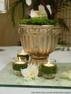 Moss covered TEALIGHT WEDDING candle holder by SpottedLeopard, $3.00