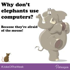 Why don't elephants use computers?... Because they're afraid of the mouse! #JokeOfTheWeek