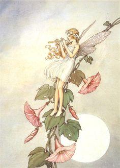 Melody in the Wind - Ida