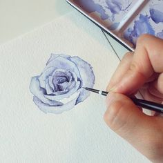 Watercolor Rose, Watercolor Landscape, Watercolour Painting, Painting & Drawing, Watercolours, Botanical Art, Botanical Illustration, Illustration Art, Watercolor Projects