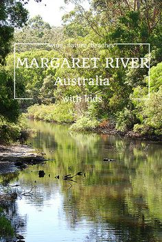 Highlights of our family trip to Margaret River - loved it! http://happygokl.com/wine-and-nature-in-margaret-river-australia/