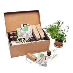 Urban gadening Startbox  Dyrk grønt i byen  Favorit startboxen er til dig der vil have godt havegear til forspiring med mulighed for såvel såning i minidrivhus med økologisk såjord med tørvebriketter og i små fiberpots der kan plantes direkte ud når planterne er klar. Med startboxen kan man forspire både grøntsager krydderurter og bladgrønt. >> link i profilen #dyrkbyen #byhaveinspiration #haveliv #urbangardening #byhave #urbangarden #urbangardening #urbangardencompany #urbanjunglebloggers…