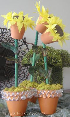Clay Pot Sunflowers