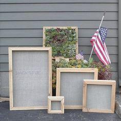 Succulent Vertical Living Wall Art Kit