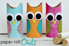 Owl Paper Roll Craft - Centsible Life