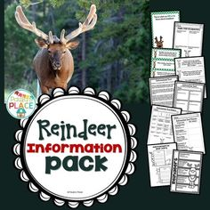 Reindeer - Informational Text Reindeer | Reindeer | Reindeer   This pack provides information about reindeers. This information will assist in the writing of your own Informational Text, guided by a rubric.   79 Pages