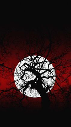 Scary Moon Tree IPhone Wallpaper - IPhone Wallpapers