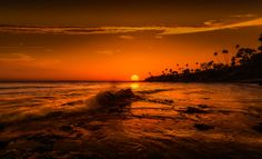Golden moment by David D on 500px