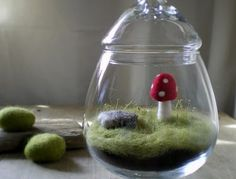 i love mushroom, and its memories. hope i can keep the mushroom in a jar, and let it alive. forever. (May 2012)