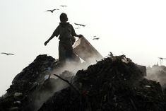 New Delhi, India - January 11, 2007: Child picking trash