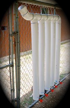 chicken watering system Pvc Chicken Waterer, Diy Chicken Feeder, Chicken Water Feeder, Chicken Perches, Chicken Coops, Chicken Watering System, Chicken Tractors, Quail, Chicken Life
