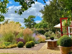 4 GRAMINÉES HAUTES magnifiques au jardin ! 🌾 Miscanthus Sinensis Gracillimus, Design Jardin, Spa, Garden, Houses, Terrace Garden, Cottage Gardens, Modern Gardens, Backyard Farming