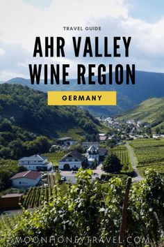 Ahr Valley Wine Region Travel Guide (Germay's largest red wine growing region)- Find out what to see and do, where to drink wine, how to hike the Red Wine Trail, where to stay and what to eat. Hiking Tours, Hiking Trails, European Travel Tips, Wine Tourism, Travel Guide, Travel Ideas, Ultimate Travel, Germany Travel, Red Wine