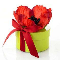 poppy topped box