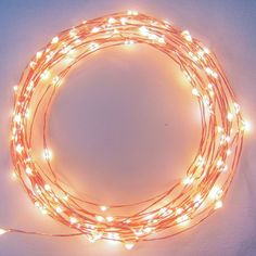 Found it at AllModern - 20 ft. Fairy String Lights
