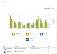 screenshot: Visitor log and Analytic report