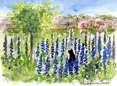 Black-cat-in-blue-delphinium-flower-border-Original-watercolour-painting