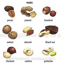 www.street.polly-glot.com nuts almond peanut hazelnut pecan cashew pistachio
