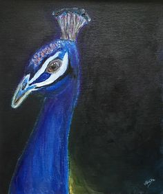 Organic Paint Brush: Peacock with abstract background