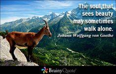 The soul that sees beauty may sometimes walk alone. - Johann Wolfgang von Goethe