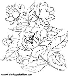 Flower Coloring Page 66 …                                                       …