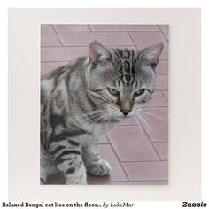 Relaxed Bengal cat lies on the floor outdoors Jigsaw Puzzle Make Your Own Puzzle, Custom Gift Boxes, Bengal, High Quality Images, Shelter, Jigsaw Puzzles, Kitten, Outdoors, Flooring