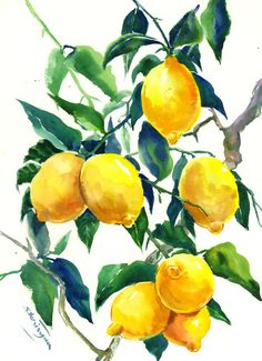 Lemon Tree art, Kitchen Artwork, Lemon Tree, original-one of a kind watercolor painting, yellow lemons, lemon art, lemon painting by ORIGINALONLY on Etsy