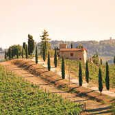 Will honeymoon in Italy...