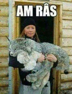Am râs... Animals And Pets, Funny Animals, Cute Animals, Internet, Cringe, Cartoon Network, Funny Images, Laugh Out Loud, The Funny