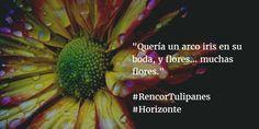 En #Horizonte, el amor tiene magia y color... #RencorTulipanes