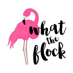 Check out this awesome 'What+The+Flock+Flamingo' design on @TeePublic! Flamingo Party, Flamingo Decor, Flamingo Birthday, Pink Flamingos, Flamingo Puns, Flamingo Bird, Motivational Quotes For Women, Cute Quotes, Pink Bird