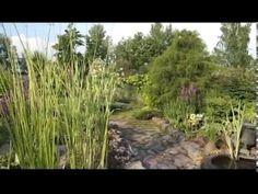 Частный сад Ирины Пыжиковой возле Павловска под Санкт-Петербургом - YouTube