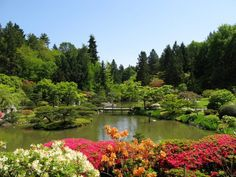 Here Are 10 of the Most Beautiful Gardens In Washington You'll Ever See Seattle Japanese Garden, Japanese Gardens, Japanese House, Washington State Parks, Evergreen State, Most Beautiful Gardens, Beautiful Things, Japanese Landscape, Easy Garden