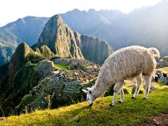 American archaeologist Hiram Bingham rediscovered Machu Picchu in 1911. Be an explorer and visit the ruins of the Inca -- pre-Columbian South America's most advanced civilization.