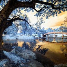 Autumn tactics. by Nathan Hayag (digitalpimp) on 500px.com