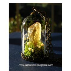Raw Citrine pendant Crystal Terrarium necklace by phoenixchiu