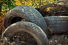The UK disposes of a million tyres a week. Since the Government has banned sending scrap tyres to landfill, and burning tyres is definitely no longer an option! So all old tyres have to be recycled, by companies like Yes Waste Tyre Recycling. Recycling Process, Old Tires, How To Make Diy, Diy Recycle, Big Dogs, Traveling By Yourself, Scrap, Outdoor Decor, Instagram Posts