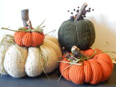 These little sweater pumpkins are so easy to make and dress up your home beautifully! Easy to make with no Sewing required! Sweater Pumpkins, Fall Pumpkins, Velvet Pumpkins, Diy Pumpkin, Pumpkin Crafts, Autumn Crafts, Holiday Crafts, Fabric Pumpkins No Sew, Old Sweater Crafts