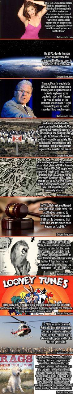 Random Interesting Facts Compilation, Part 313