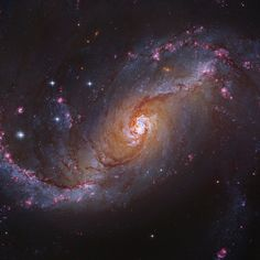 NGC 1672 Barred Spiral Galaxy in Dorado (the Swordfish), 60 mly away. It has many dark filamentary dust lanes that extend in many directions, from the galactic nuc-leus to the inner edges of the spiral arms. Image Credit: NASA/ESA (STScI/NASA) (ST-ECF/ESA) (CADC/NRC/CSA). Processing: Robert Gendler