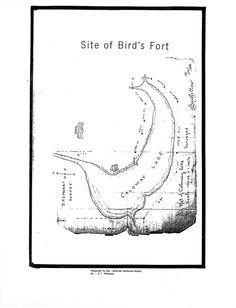Arlington Texas, Texas History, Fort Worth, Birds, Bird