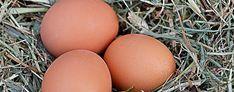 El huevo te limpia de energias negativas. El huevo es una de las armas más poderosas contra los ataques energéticos, mal de ojo y las llamad...